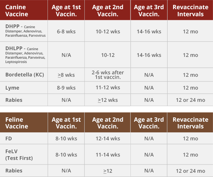 Pet Vaccination Schedules Northern Plains Animal Health